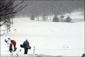 snow_golf_450x300
