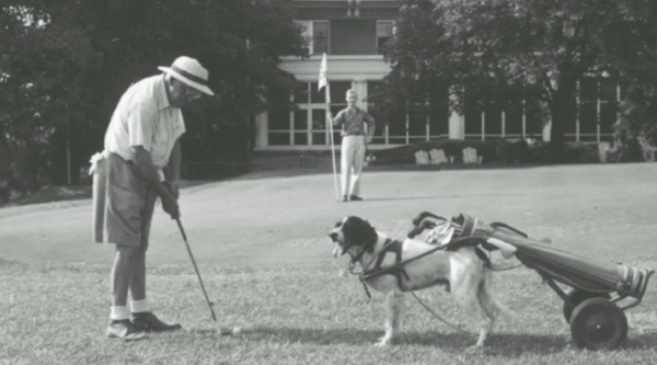 9a. Golf with dog caddy- l