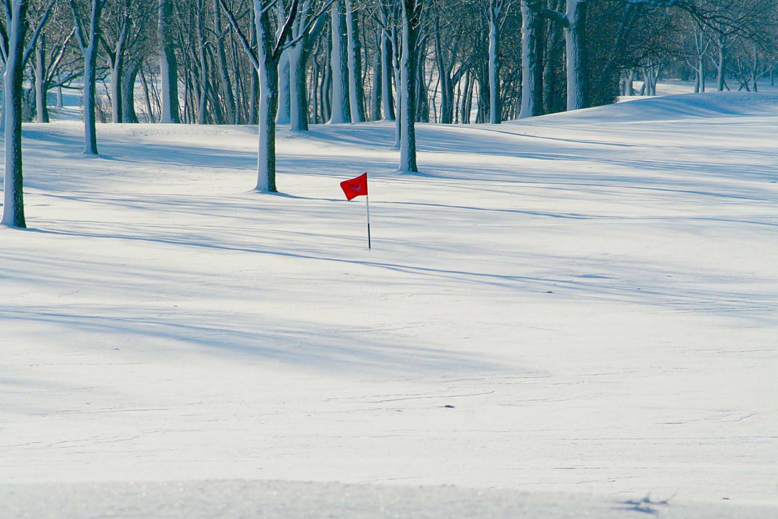 snow-flag-2